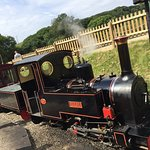 The steam train that takes you from the car park into the main attraction area.