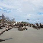 Foto de Hunting Island State Park