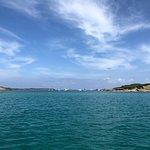 Foto de Navega Menorca