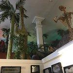 Dinosaurland Fossil Museum의 사진
