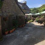 Abbotsbury Tea Roomsの写真