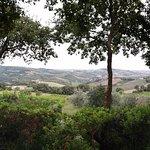 Foto de Agriturismo Rossoconero