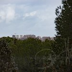 卡薩-德坎波公園照片