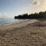 Photo of Playa Las Ballenas