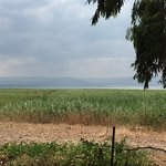 View towards the Kinneret( Sae of Galilee) from Magadala