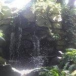 Billede af Paradise Park