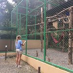 Photo of Alturas Wildlife Sanctuary