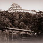 Wakayama Castle Foto