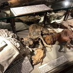 Bilde fra The Museum of Witchcraft and Magic