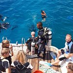 Photo of Manta Ray Dive Hurghada