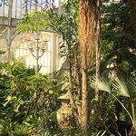 Botanic Gardens Bild