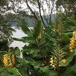 Foto de Lagoa Azul, São Miguel Açores