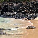 Zdjęcie Ho'okipa Beach Park