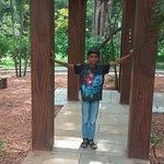 Pondicherry Botanical Gardensの写真