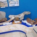 Baikal Limnological Museum fényképe