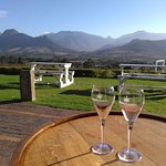 Winetasting at Haute Cabriere, Franschoek