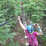 Bild från Treetop Trekking Huntsville