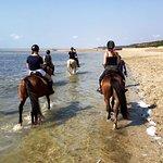 Foto de Mozambique Horse Safari