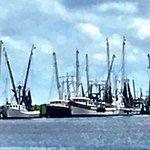 Foto de Skipper's Fish Camp