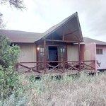 Kilima Safari Camp Bild