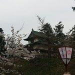 ภาพถ่ายของ Hirosaki Cherry Blossom Festival