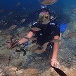 Bilde fra Kusadasi Diving Center