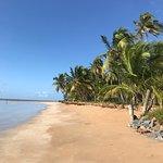 Фотография Bitingui Beach