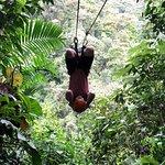 Mindo Canopy Adventure Foto