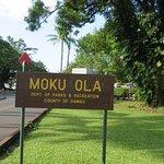 Way To Moku Ola ( Coconut Tree ) Islands