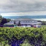Anthony Road Wine Company照片