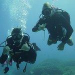 Photo of Mikumba Diving