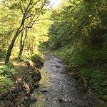 ภาพถ่ายของ Takino Suzuran Hillside National Park