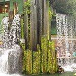 waterfall over the vegetarian restaurant