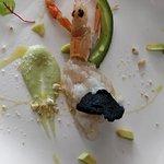 Tartare di scampi e avocado