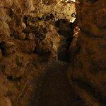 Xerri's Grotto照片