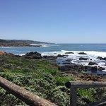 Фотография Moonstone Beach