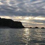 Bilde fra Ilfracombe Sea Safari