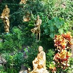 Buddha's statues