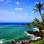 Foto de Kandy Hill Tours  - Private Day Tours