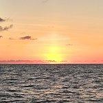 Photo of Cabo Adventures - Luxury Sailing Adventure