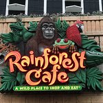Rainforest Cafeの写真
