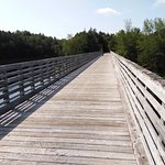 The trail bridge over the Nashwaak River
