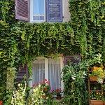fenêtres des chambres donnant sur le jardin