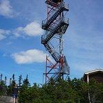 Terra Nova National Park: Ochre Hill Fire Tower