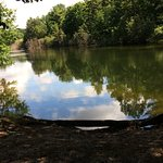 Foto de Ludington State Park