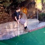 Billede af Pirate's Cove Adventure Golf