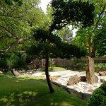 Botantic Garden Fort Worth