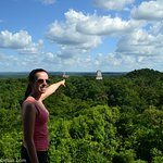 Tikal National Park Tours From Belize Mundo Maya Belize
