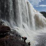 ภาพถ่ายของ Angel Falls