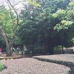 Wan Chai Park (2)